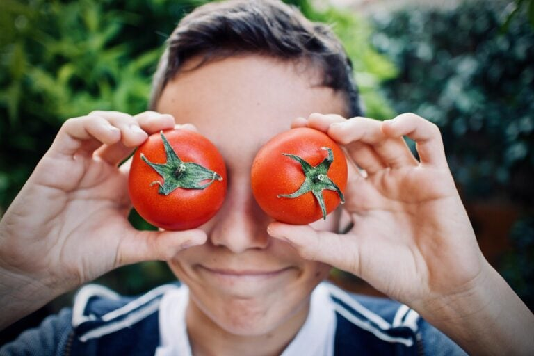 Guy Tomatoes Faces Cute Outdoors - sweetlouise / Pixabay