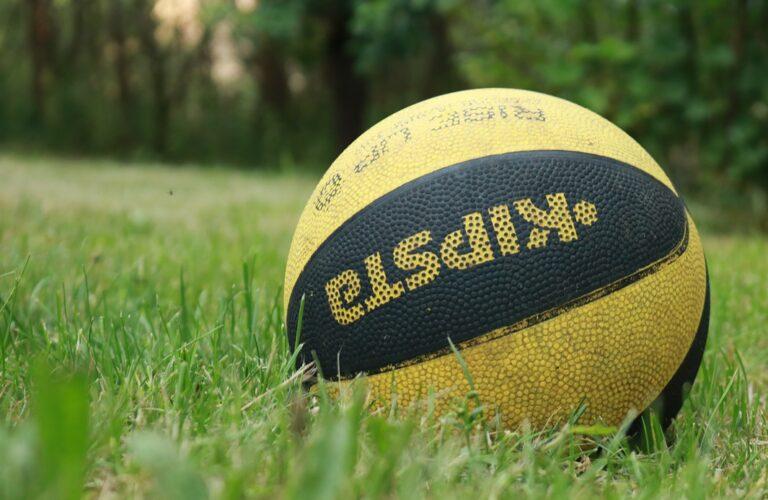 The Ball Basketball Grass Sport  - trapicer_tv / Pixabay